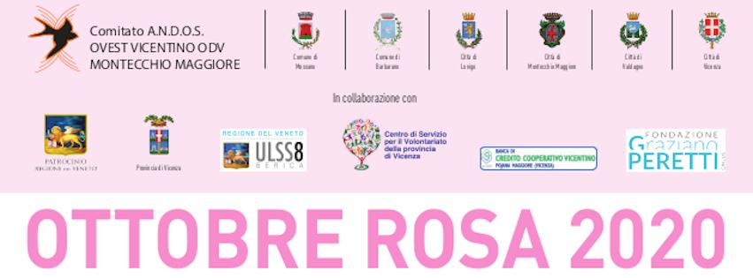 https://www.andosovestvi.it/2020/09/21/ottobre-rosa-2020/